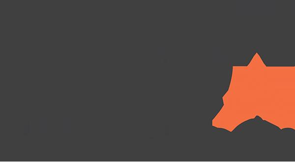 AlteX Logo ORG Dark